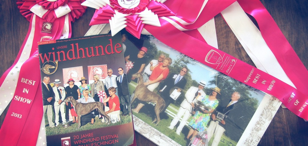 zwycięzca bis greyhound 2013 z jurajskich biskupic