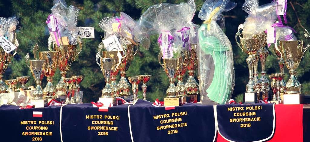mistrzostwa polski w coursingu