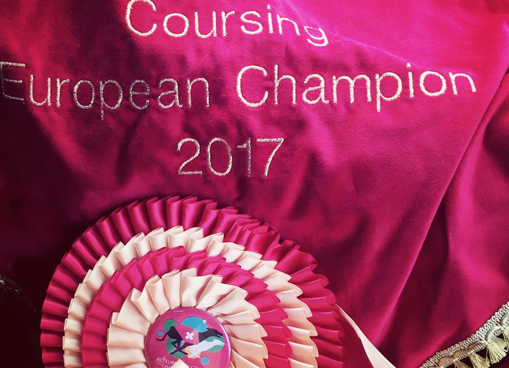 zwyciezca europy w coursingu