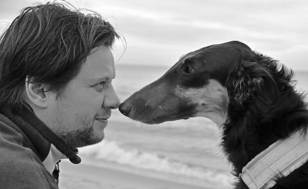 pies i człowiek